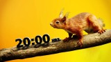 """""""Animalia"""" de lunes a viernes 20:00 hrs."""