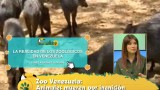 Denuncian lamentable situación en el zoológico de Venezuela